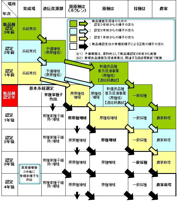 種子増殖体系